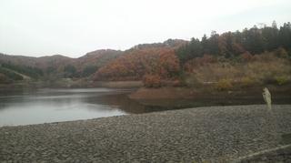 11月14日 花森湖.JPG
