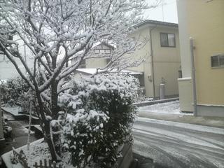 2010,12,16雪.JPG