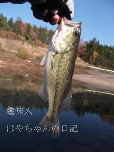 2011.11.18 花森湖にて.JPG