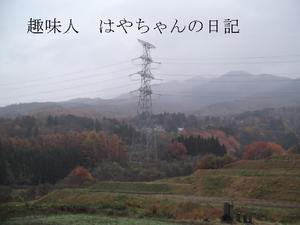 2011.11.20.JPG