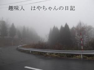 2011.11.20 蔵王ライン.JPG