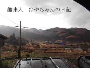 2011.11.20 里の紅葉.JPG