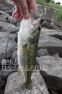 2011.7.20 花森湖にて.JPG