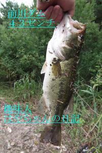 2011.7.22 前川ダム.JPG