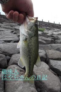 2011.7.29 .JPG