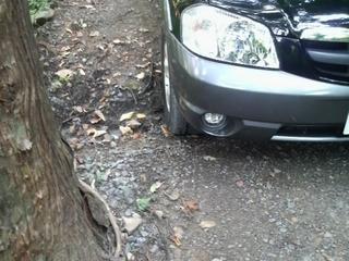林道での段差.JPG