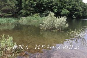 前川ダム 2011年7月6日.JPG