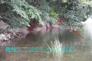 前川ダムにて.JPG