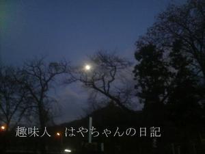 携帯にて 2011.11.11.JPG