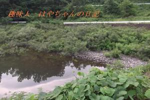 花森湖 減水後 .JPG