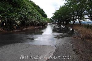 花森湖 西側ダムサイト.JPG