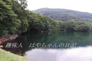 蔵王鴫の谷地沼 西側.JPG