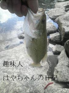 超マッデイ〜.JPG
