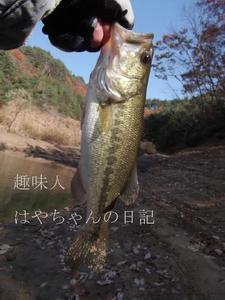 2011.11.23前川ダムにて.JPG
