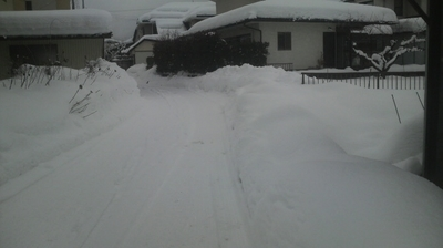 2011年1月17日.JPG