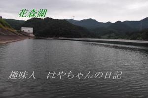 2011年7月19日 花森湖.JPG