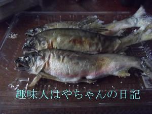 鮎の塩焼き.JPG