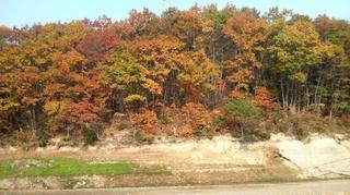 2009.10.31.JPG