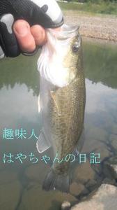 2011.10.8 花森湖.JPG