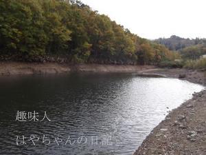 2011.11.3 前川ダム流れ込み.JPG