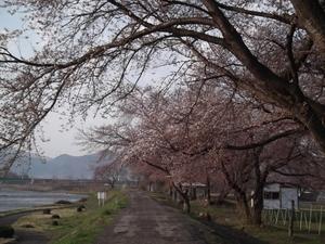 2011.4.26.JPG