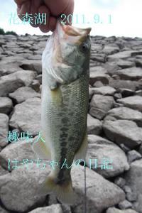 2011.9.1 花森湖にて.JPG