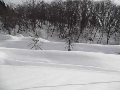 2011年2月20日 蔵王雪景色.JPG