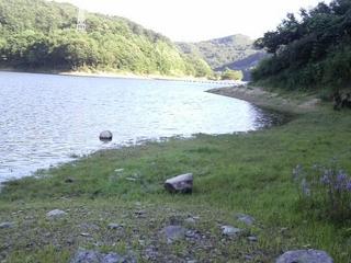 前川ダム.JPG