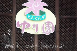 どんでん平 ゆり園.JPG