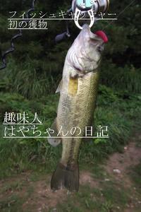 フィッシュキャッチャー・初獲物.JPG