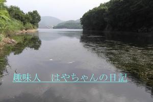 前川ダム 流れ込みからダムサイトを望む.JPG