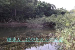 前川ダム 流れ込み最上流.JPG