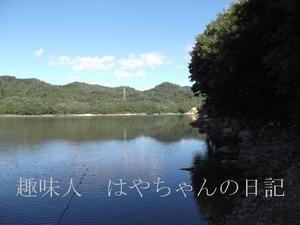 前川ダム 熊野ワンド 早朝.JPG