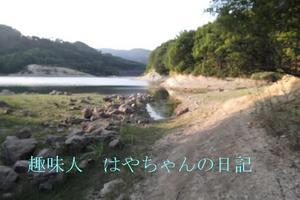 熊野ワンドにある島の裏側.JPG
