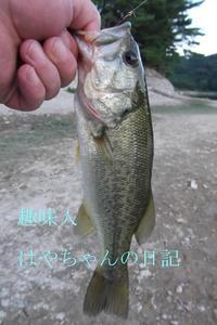 熊野ワンドにて.JPG