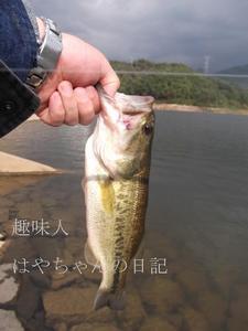 花森湖にて 10月16日.JPG