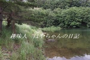 超満水 2011年7月6日.JPG