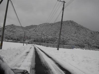 2011年1月10日 上山市.JPG