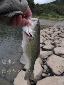 2011年10月15日 花森湖にて.JPG