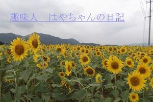 2011年8月18日 蔵王にて.JPG