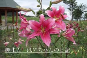 yuri 2.JPG