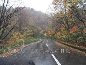 蔵王ライン 2011.10.23.JPG